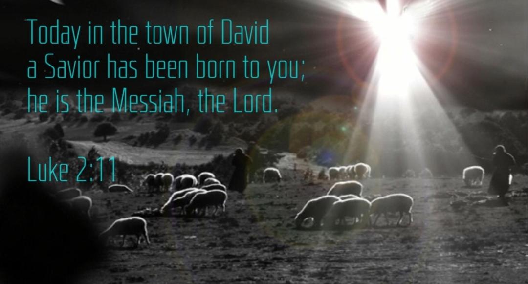 Luke 2-11